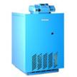 Атмосферный газовый котел Logano G234WS new от фабрики Buderus.