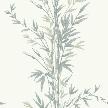обои Bamboo 100/5025 от компании  Cole & Son