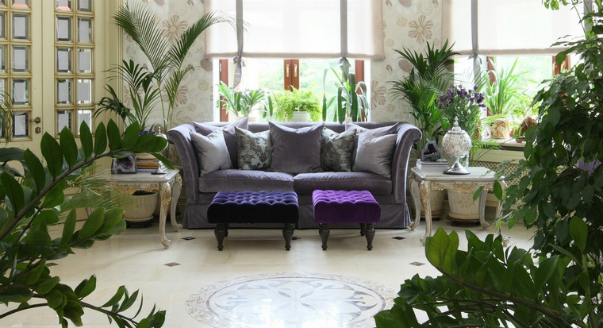 Зимний сад в квартире своими руками фото 163
