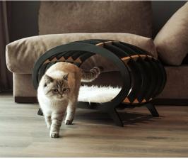 Интерьер с кошкой