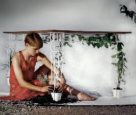 «Растительный» стол