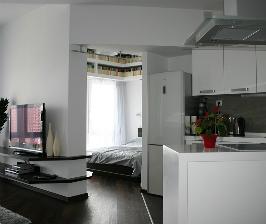 Киев: квартира 46,2 кв.м