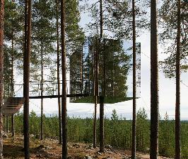 Отель в лесу