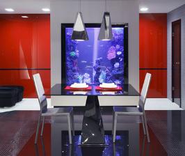 9 советов, как расположить аквариум в интерьере