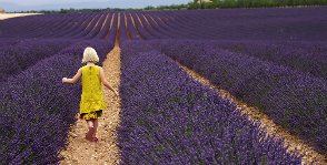 Провансальская весна Helgi Home