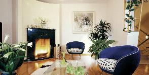 Растения-экзоты в квартире