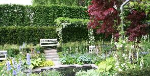 Деревья и кустарники – основа сада