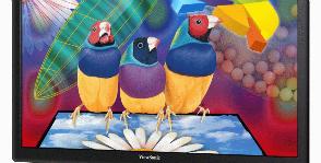 ViewSonic предлагает экологичные мониторы