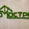 Зелёный декор. Стабилизированный мох.